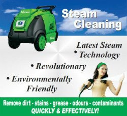 steam cleaning auto detail